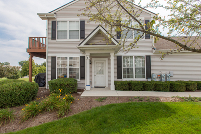 Round Lake Condo/Townhouse For Sale: 1286 West Oriole Court