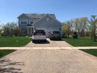 Round Lake Single Family Home For Sale: 1476 South Abington Lane