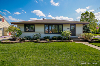 Downers Grove Single Family Home For Sale: 507 Grant Street