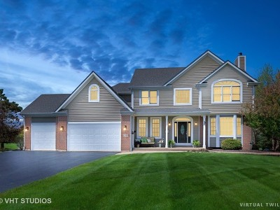 McHenry Single Family Home For Sale: 1703 Ballina Lane
