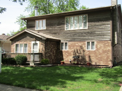 Chicago Ridge Single Family Home For Sale: 6138 Birmingham Street