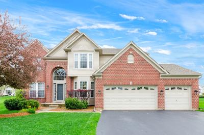 Algonquin Single Family Home For Sale: 13 Benton Court