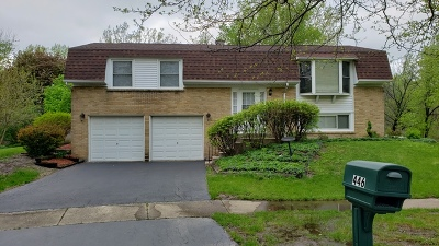 Bolingbrook Single Family Home For Sale: 446 Alcester Court