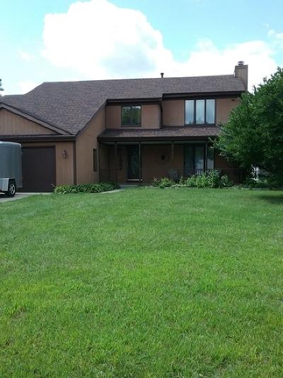 Minooka, Channahon Single Family Home For Sale: 122 Zapata Lane