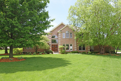 Libertyville Single Family Home New: 1750 Meadow View Circle