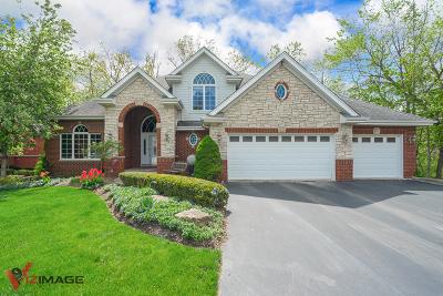 Mokena Single Family Home For Sale: 20012 White Pine Court