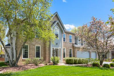 Naperville Single Family Home New: 2812 Spinner Court