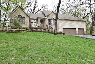 St. Charles Single Family Home For Sale: 42w320 Hidden Springs Drive