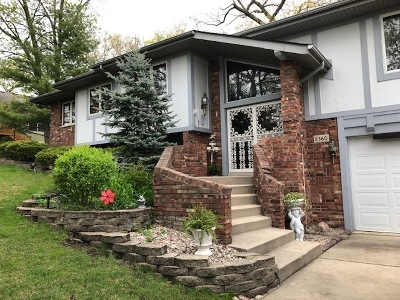 Palos Heights, Palos Hills Single Family Home For Sale: 8360 West 100th Place