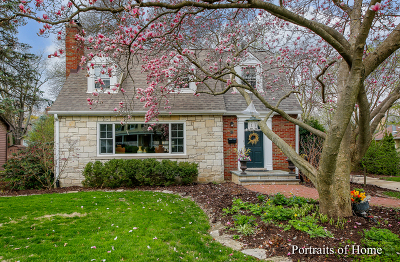 Naperville Single Family Home For Sale: 427 South Wright Street