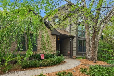 Arlington Heights Single Family Home For Sale: 2451 East Walden Lane