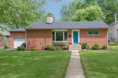 Mount Prospect Single Family Home For Sale: 506 West Sunset Road