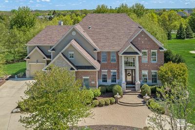 Naperville Single Family Home For Sale: 4771 Sassafras Lane