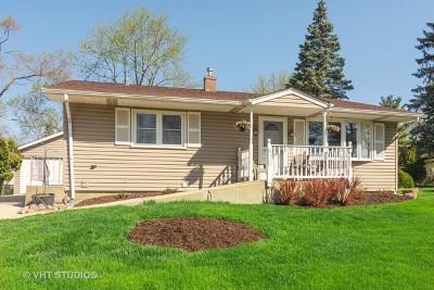 Streamwood Single Family Home For Sale: 128 Hickory Avenue
