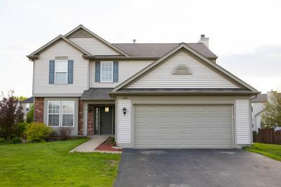 Bolingbrook Single Family Home For Sale: 125 Ginkgo Street