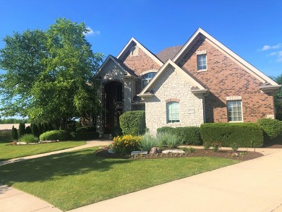 Frankfort Single Family Home For Sale: 22955 Folkestone Way