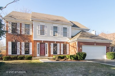 Palatine Single Family Home For Sale: 1293 North Lakeview Drive
