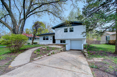 Downers Grove Single Family Home For Sale: 6029 Grand Avenue