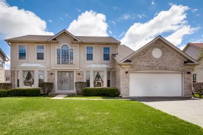 Hoffman Estates Single Family Home For Sale: 5217 Elliott Drive