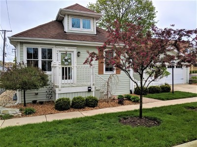 Orland Park Single Family Home For Sale: 14310 Brook Street