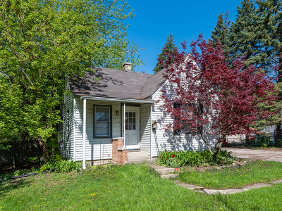 Downers Grove Single Family Home For Sale: 5912 Lee Avenue