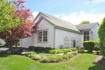 Plainfield Single Family Home For Sale: 13801 South Tamarack Drive