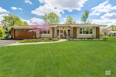 Woodridge Single Family Home For Sale: 6813 Armstrong Court