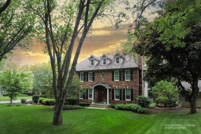 Naperville Single Family Home For Sale: 647 Plainfield Naperville Road