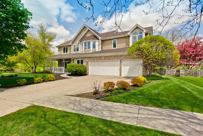 Aurora Single Family Home For Sale: 2452 Wentworth Lane