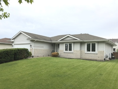 Plainfield Single Family Home New: 2915 Ruth Fitzgerald Drive