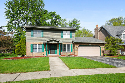 Lansing Single Family Home For Sale: 18124 Jason Lane