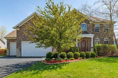 Plainfield Single Family Home For Sale: 13409 Blakely Drive