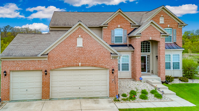 Streamwood Single Family Home For Sale: 704 Blue Ridge Drive