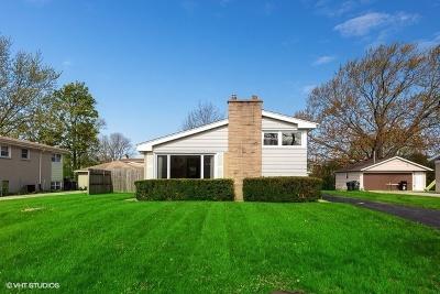 Glenview Single Family Home For Sale: 518 Lotus Lane