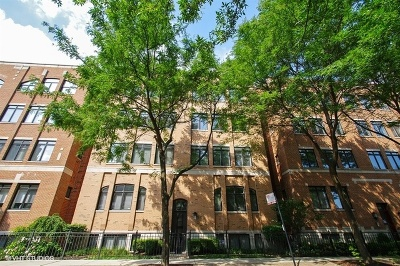 Condo/Townhouse New: 2712 North Lehmann Court #2N