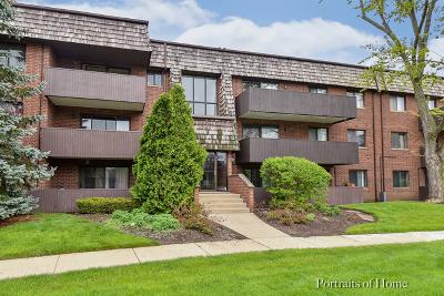 Carol Stream Rental For Rent: 484 Timber Ridge Drive #307