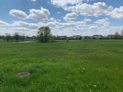 Tinley Park Residential Lots & Land For Sale: 7 Messina Court