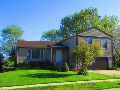 Schaumburg Single Family Home For Sale: 2116 Parkville Road
