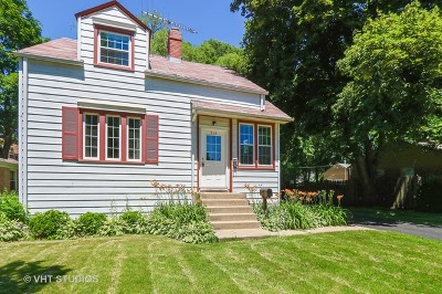 Libertyville Single Family Home For Sale: 512 East Lincoln Avenue