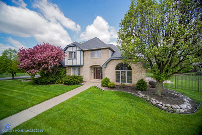 Orland Park Single Family Home For Sale: 10730 Victoria Place