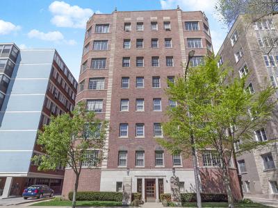 Evanston Condo/Townhouse For Sale: 1426 Chicago Avenue #1S