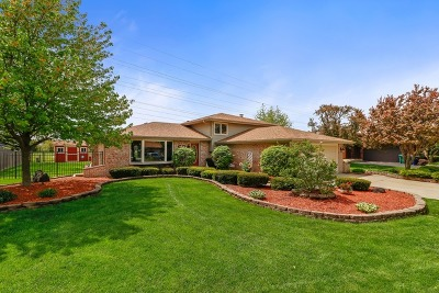 Orland Park Single Family Home For Sale: 8023 Anne Drive