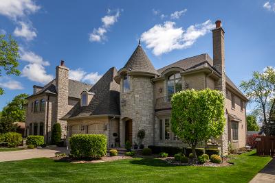 Elmhurst Single Family Home For Sale: 265 South Poplar Avenue