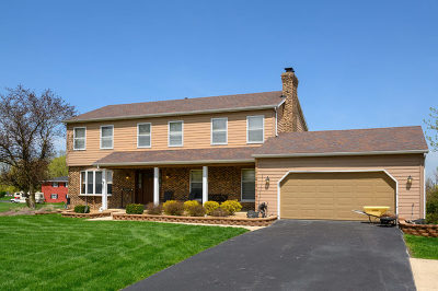 Plainfield Single Family Home For Sale: 9623 South Carls Drive