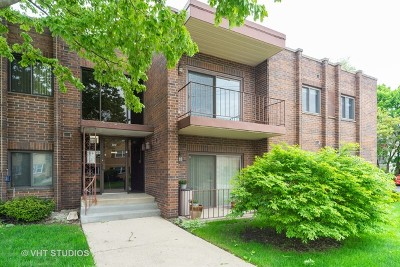 Elmhurst Condo/Townhouse For Sale: 105 South Arlington Avenue #204