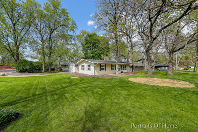 Palatine Single Family Home For Sale: 450 West Shady Lane Road