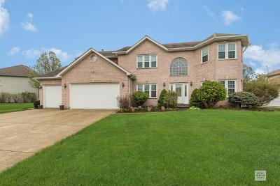 Plainfield Single Family Home For Sale: 13613 Capista Drive