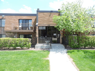 Schaumburg Condo/Townhouse For Sale: 717 Tipperary Court #2C