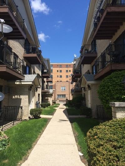 Elmwood Park Condo/Townhouse New: 7204 West Cortland Street #206