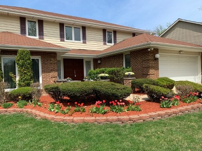 Arlington Heights Single Family Home For Sale: 1616 West Plymouth Drive